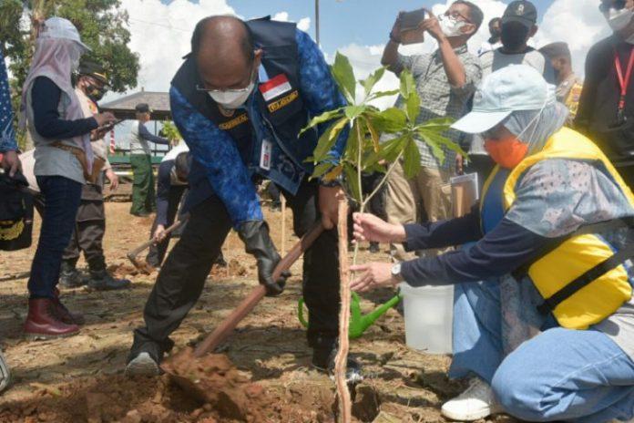 Pj Gubernur Kalsel Safrizal ZA melakukan penanaman pohon saat Peringatan Hari Lingkungan Hidup, 5 Juni 2021. (Antaranews Kalsel/Istimewa)